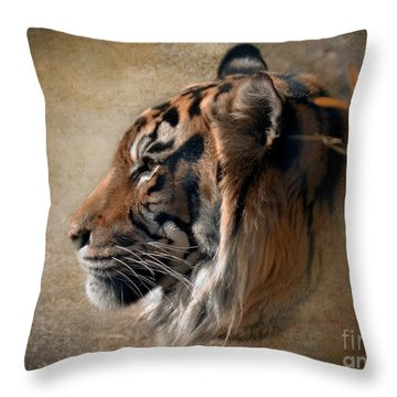 Burning Bright Throw Pillow by Betty LaRue