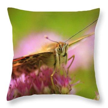 Butterfly Macro Throw Pillow by Adam Romanowicz