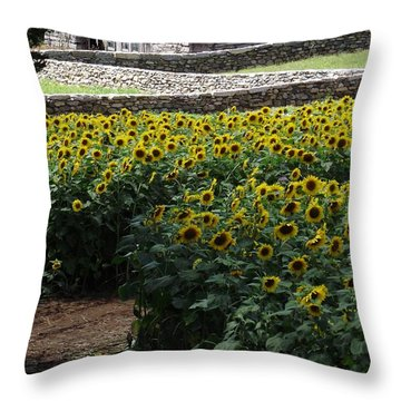Buttonwood Throw Pillow by Michelle Welles