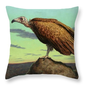 Buzzard Rock Throw Pillow by James W Johnson