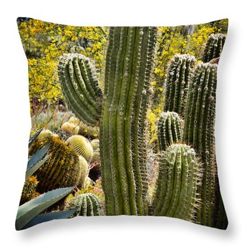 Cacti Habitat Throw Pillow by Kelley King