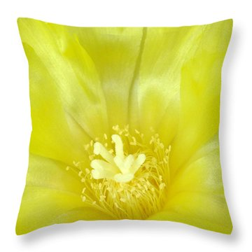 Cactus Dance II Throw Pillow by Bill Morgenstern