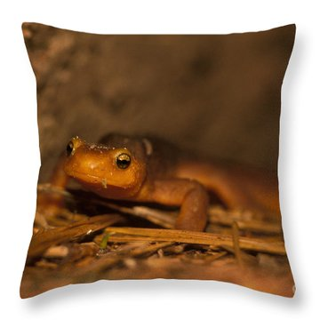 California Newt Throw Pillow by Ron Sanford