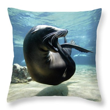 California Sea Lion Yawning Throw Pillow by Hiroya Minakuchi