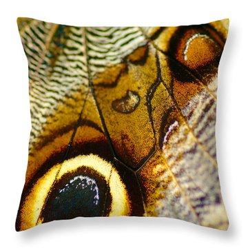Caligo Atreus Throw Pillow by Floyd Menezes