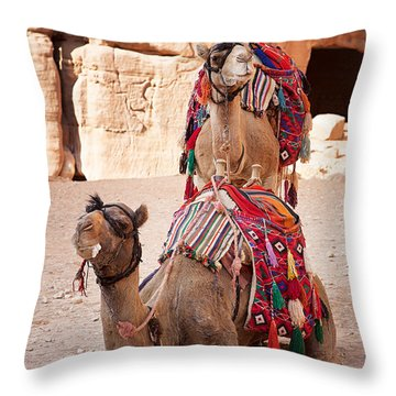 Camels In Petra Throw Pillow by Jane Rix