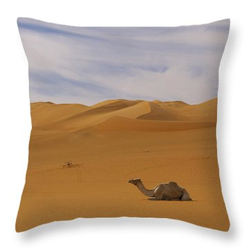Camels Throw Pillow by Ivan Slosar
