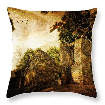 Can You Hear Them Throw Pillow by Lois Bryan