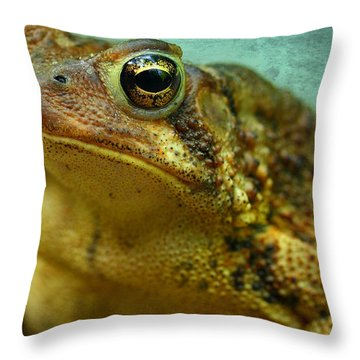 Cane Toad Throw Pillow by Michael Eingle