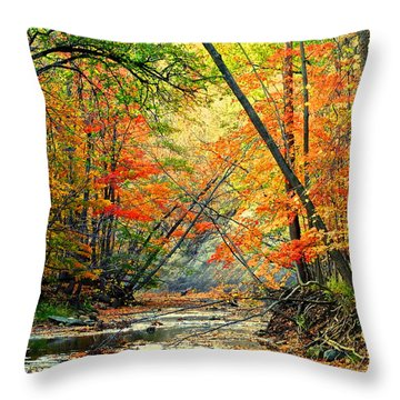 Canopy Of Color II Throw Pillow by Frozen in Time Fine Art Photography