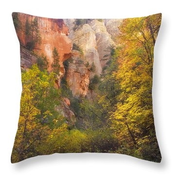 Canyon Kaleidoscope  Throw Pillow by Peter Coskun