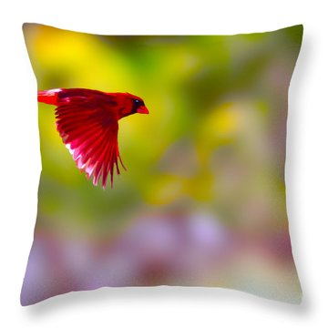 Cardinal In Flight Throw Pillow by Dan Friend
