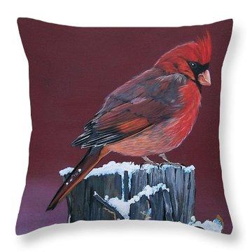 Cardinal Winter Songbird Throw Pillow by Sharon Duguay
