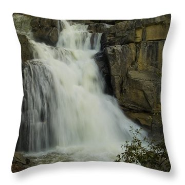 Cascade Creek Under The Bridge Throw Pillow by Bill Gallagher