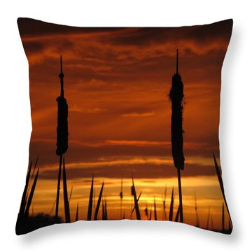 Cat Nine Tails Sunset Throw Pillow by Donnie Freeman