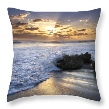 Catching The Light Throw Pillow by Debra and Dave Vanderlaan