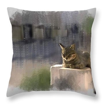 Catnap Throw Pillow by Usha Shantharam