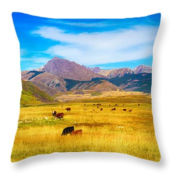 Cattle Grazing Autumn Panorama Throw Pillow by James BO  Insogna
