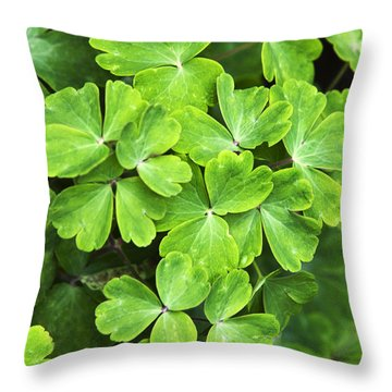 Certain Green Throw Pillow by Christina Rollo