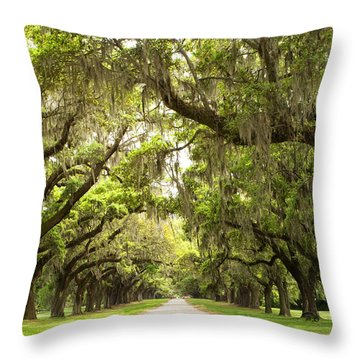 Charleston Avenue Of Oaks Throw Pillow by Stephanie McDowell