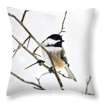 Charming Winter Chickadee Throw Pillow by Christina Rollo