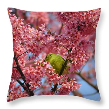 Cherry Blossom Time Throw Pillow by Bill Cannon