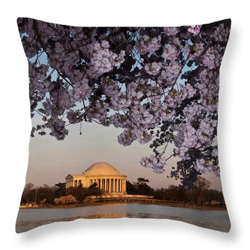 Cherry Blossom Tree With A Memorial Throw Pillow by Panoramic Images