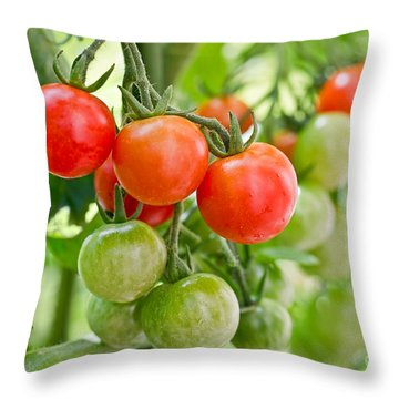 Cherry Tomatoes Throw Pillow by Delphimages Photo Creations