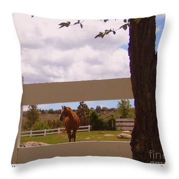 Chestnut Beauty Throw Pillow by Bobbee Rickard