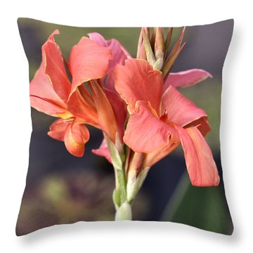 Chicago Botanical Gardens - 79 Throw Pillow by Ely Arsha