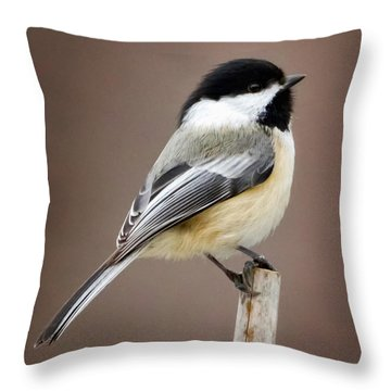 Chickadee Square Throw Pillow by Bill Wakeley