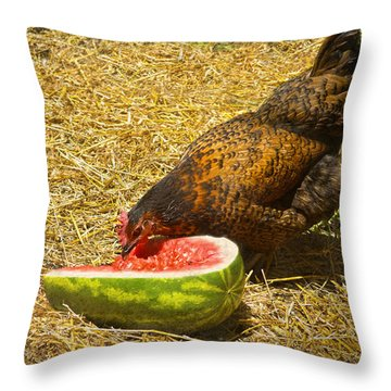 Chicken And Her Watermelon Throw Pillow by Sandi OReilly