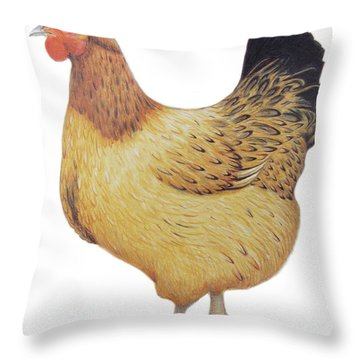Chicken Throw Pillow by Ele Grafton