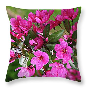 Chinese Apple Blossoms Throw Pillow by Dora Sofia Caputo Photographic Art and Design