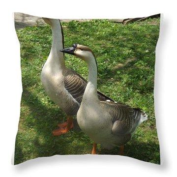 Chinese Swan Goose Pair 2 Throw Pillow by Sara  Raber