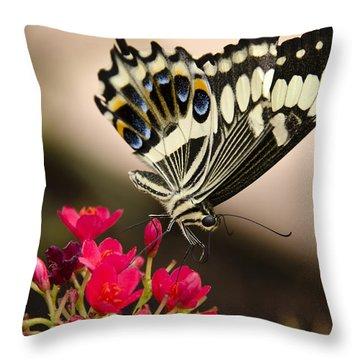 Citrus Swallowtail  Throw Pillow by Saija  Lehtonen