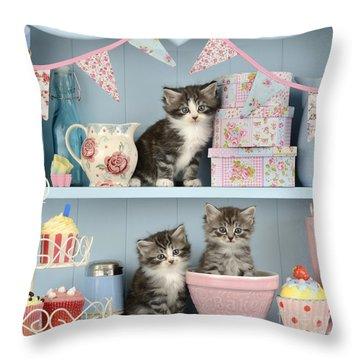 Baking Shelf Kittens Throw Pillow by Greg Cuddiford