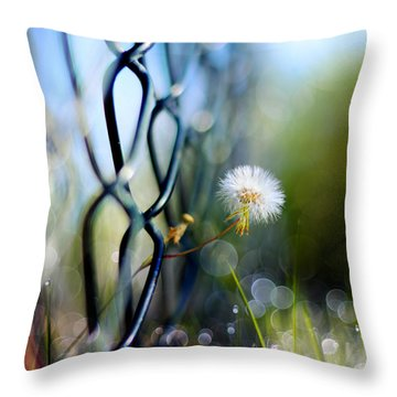 Clash Of The Titans Throw Pillow by Laura Fasulo