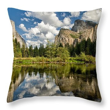 Classic Valley View Throw Pillow by Cat Connor