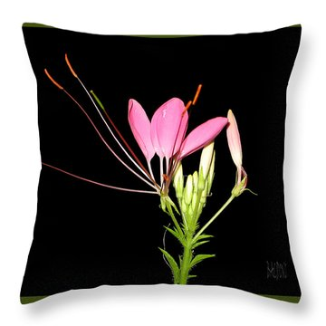 Cleome Throw Pillow by J R Baldini Master Photographer