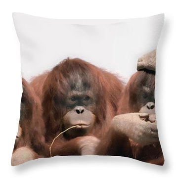 Close-up Of Three Orangutans Throw Pillow by Panoramic Images