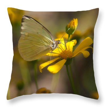 Cloudless Sulphur  Throw Pillow by Saija  Lehtonen