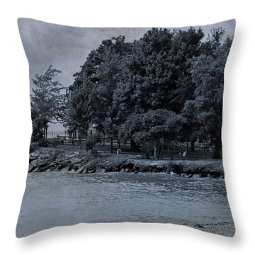 Coastal Living On Lake Erie Throw Pillow by Dan Sproul