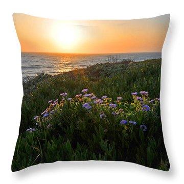 Coastal Sunset Throw Pillow by Lynn Bauer
