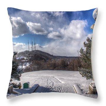 Cobbs Hill Park In Winter Throw Pillow by Tim Buisman