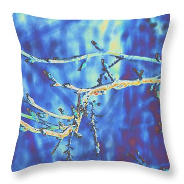 Cold Throw Pillow by Carol Lynch
