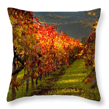 Color On The Vine Throw Pillow by Bill Gallagher