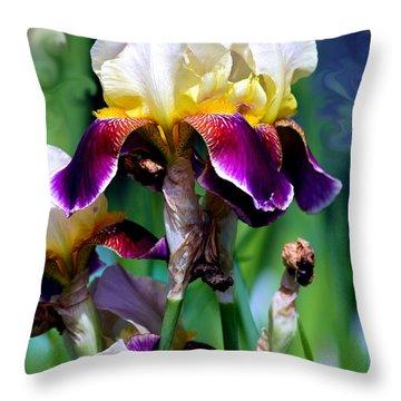 Colorful Iris Grandeur Throw Pillow by Karon Melillo DeVega