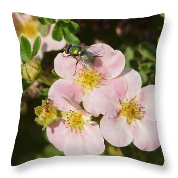 Come To The Ugly Bug Ball Throw Pillow by Ernie Echols