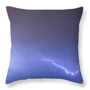 Coming In For A Landing Throw Pillow by James BO  Insogna